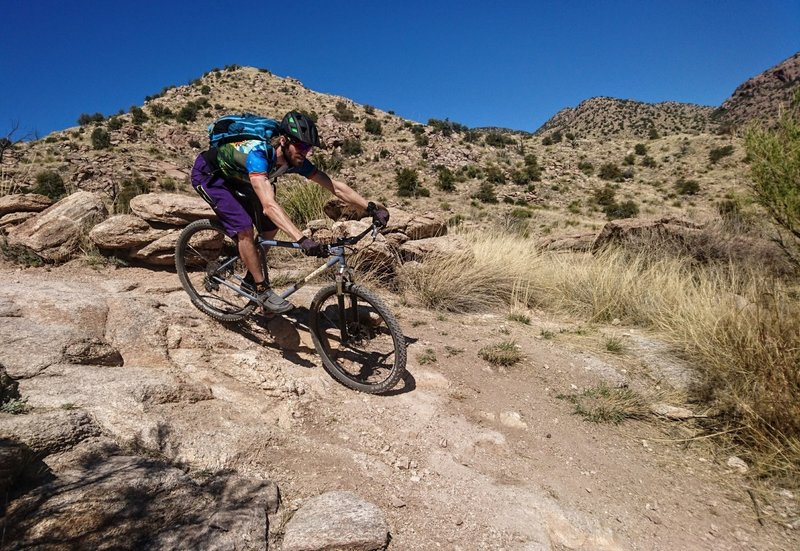 Mountain Bike Trails near Tucson