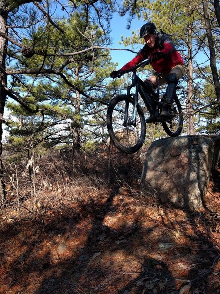 Drop to flat - Lynn's signature move. Joe riding Bow Ridge Trail