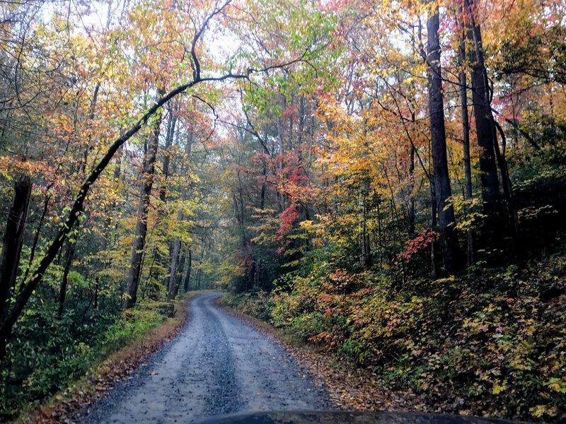 Holley Creek Gap Road.