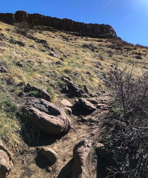 Golden Summit Trail