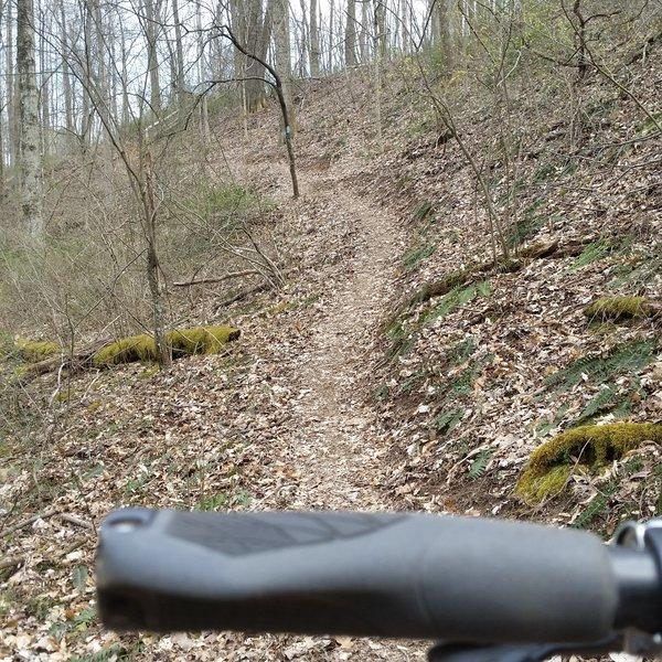 Quality trail build!