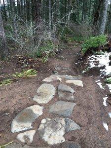 Catamount Trail Loop Mountain Bike Trail, Lyons, Oregon on