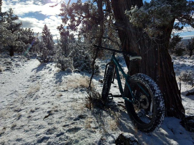 Just enough snow to make it fun!