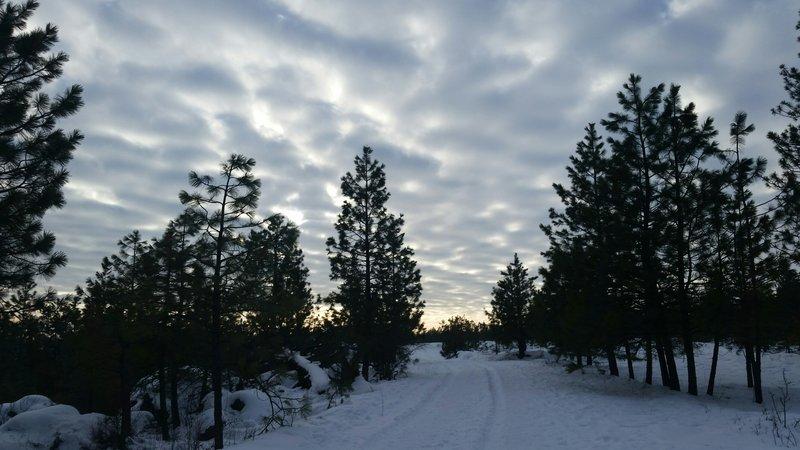 Spokane sunset.