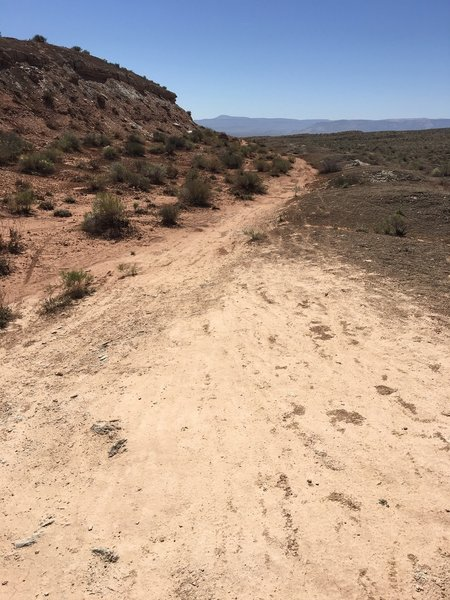 Need to explore this side trail off Snake Pit