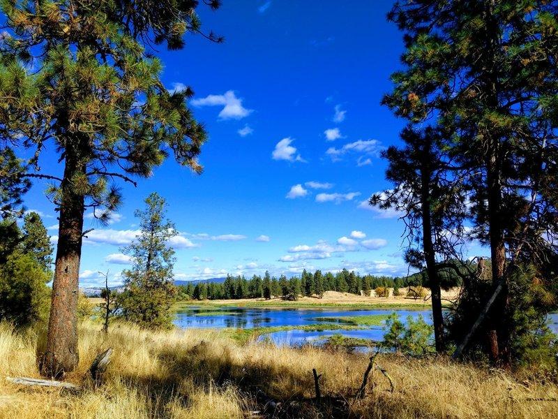 Spokane summer skies