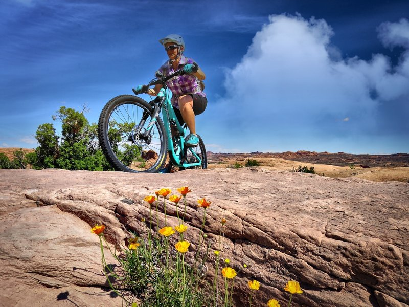 Spring time is a beautiful time to visit Moab!