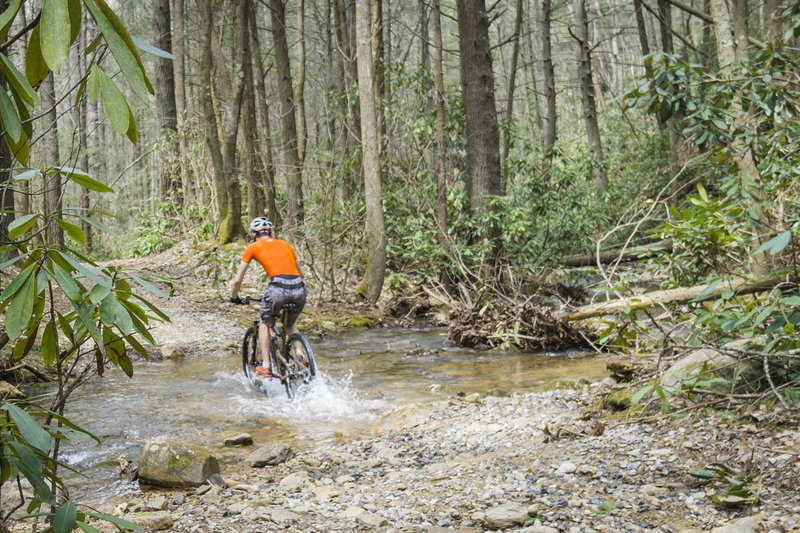 Splashing through Kinser Creek along the Virginia Highlands Horse Trail