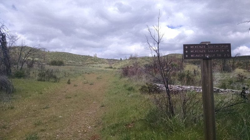 Trail sign at the bottom of McKenzie Gulch Spur where it turns off the gravel road.