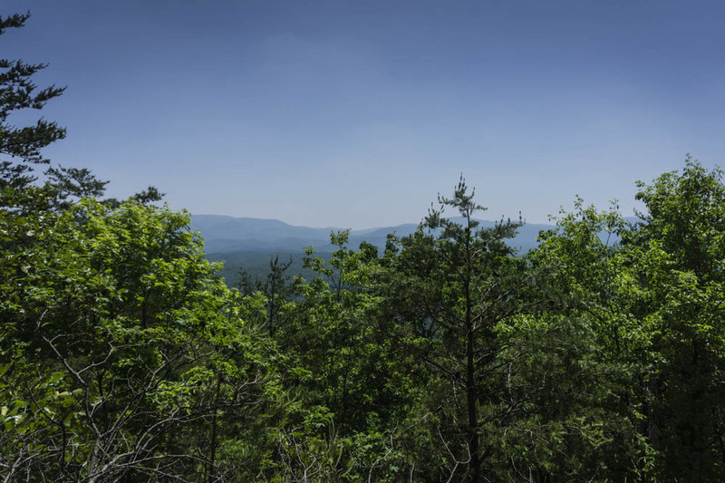 The view from Doogan Lookout - sadly the fire tower is long gone