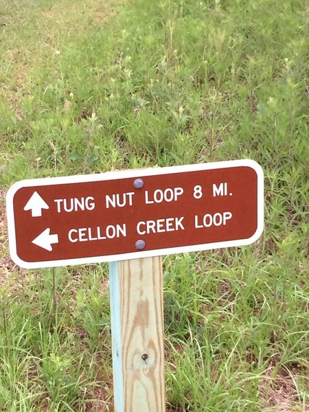 Trailhead sign for Tung Nut where it intersects with Cellon Creek Loop and the Powerline