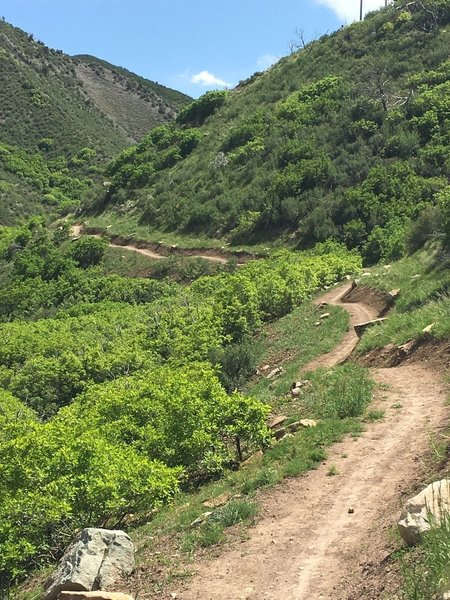 Nice new trail just west of Glenwood Springs