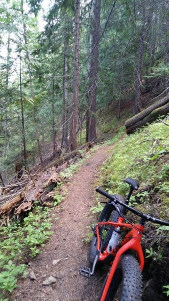 This is around mile marker 7.5 and facing south (bike pointing north). It gives you a good impression of the narrowness of the singletrack but not the exposure or steepness of the trail.