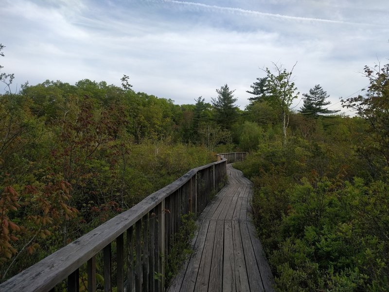 Boardwalk and a nice view of the pond