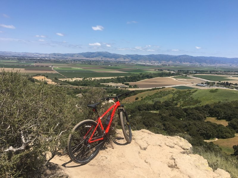 Near the confluence of Fort Ord trails; Sandy Ridge, Trail 34, Trail 31, and Trail 33.