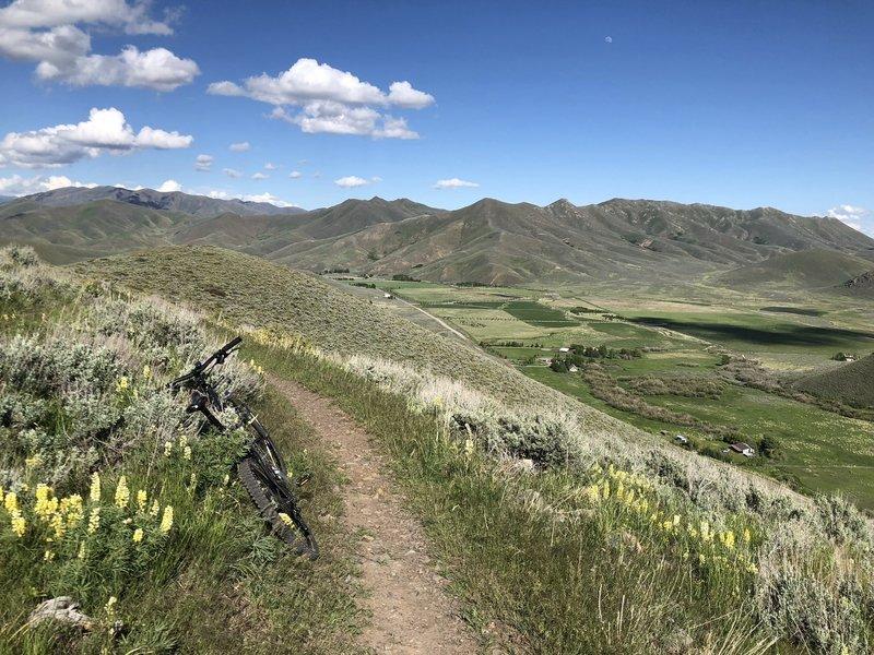 Highest point of Hidden Valley Loop, providing nice views of the valley below.