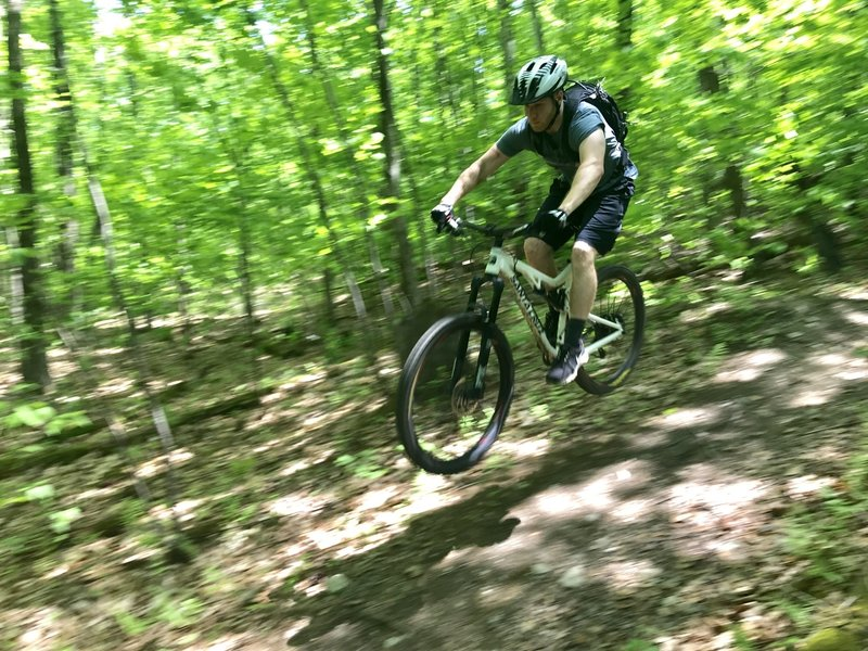 One of several jumps on the downhill section of Harvey Mountain