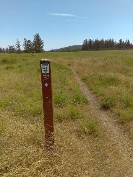 Trail 25