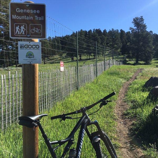 Genesee Mountain Singletrack