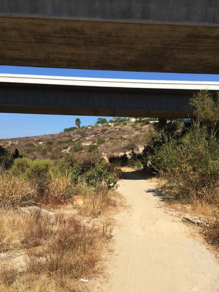 Del Mar Heights Rd underpass.