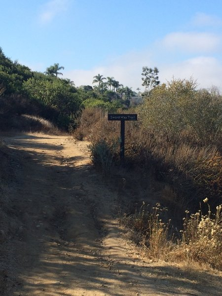Sword Way trail split.