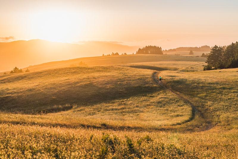 Alphawanderlust.com -Ride into the sunset- Bolinas Ridge