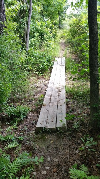 Simple wood bridge on TORC A Trail.