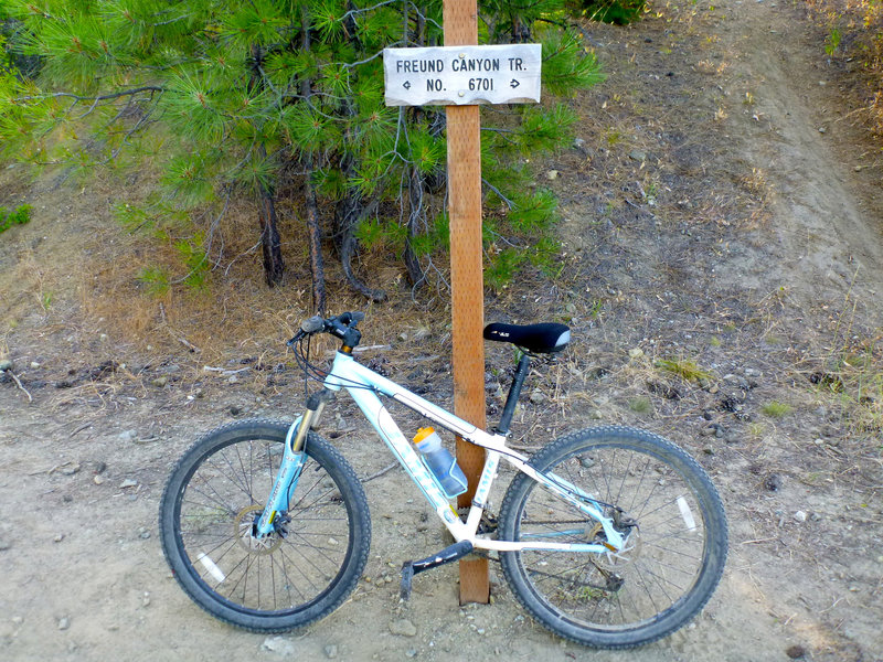 I borrowed Lisa's bike. It works GREAT.