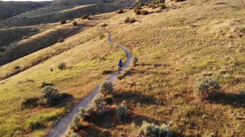 Semana Gulch, nice easy climb for the entire fam, with some beautiful views of the hills and the Valley!