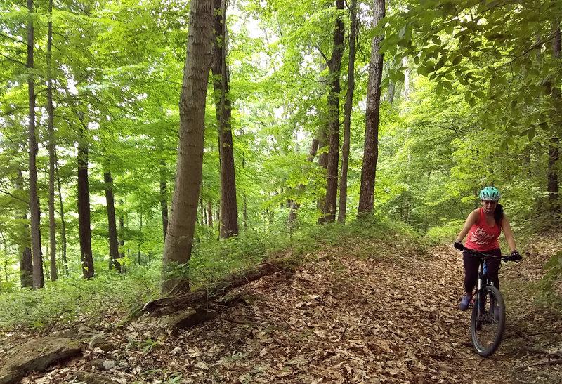 Having fun uphill at Crooked Creek Lake