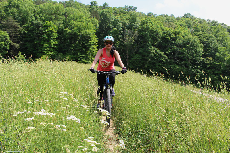 Bloom Trail at Crooked Creek