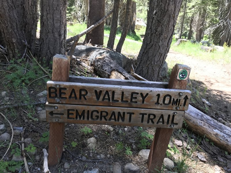 Trail Marker Along Bear Valley to Lake Alpine Trail