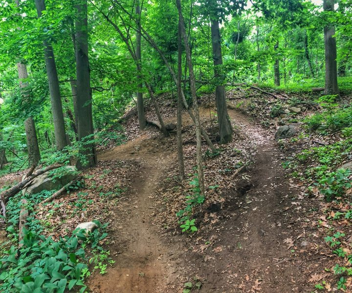 Fun turn that plays with landscape at the top of that coal road downhill. I have yet to launch the top section!