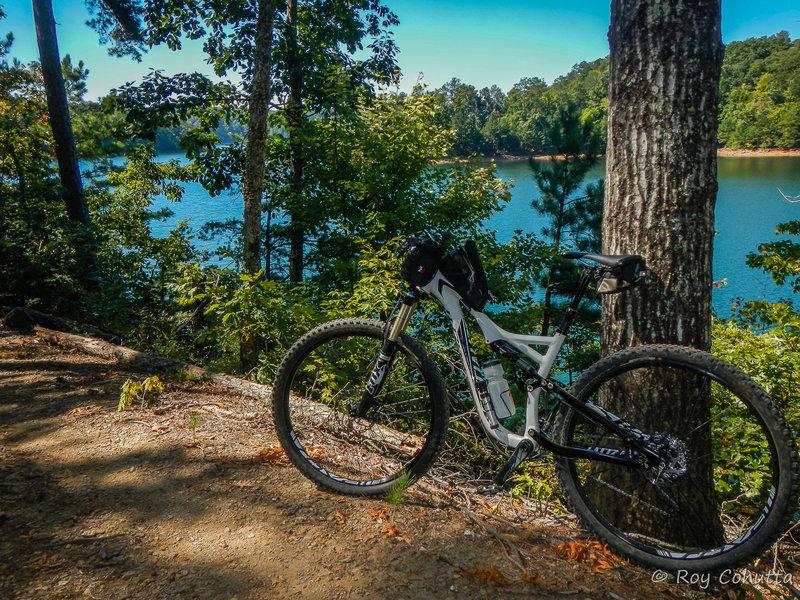 Lake View at Amadahy