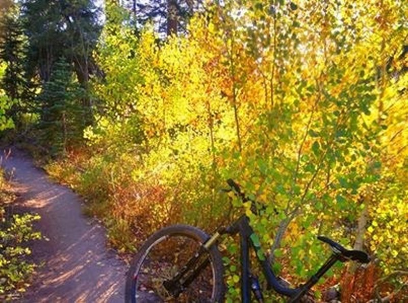 Great fall riding on the Incline Flume