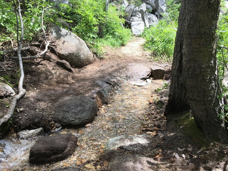 One of several stream crossings on the Incline Flume