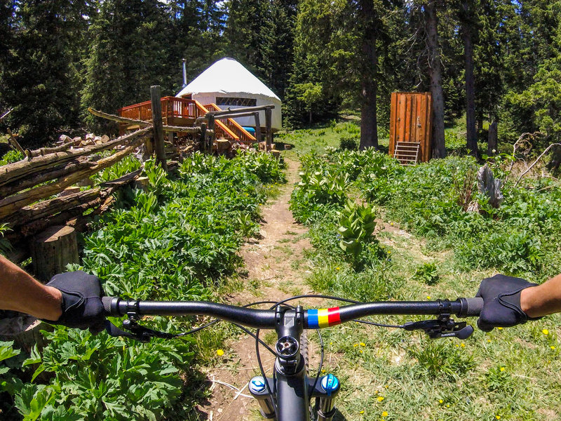 The Bull of the Woods yurt is available as nightly rental, on Carson NF lands adjacent to Northside at Taos Ski Valley. Its a perfect place to set up a base camp and explore the Northside trails.