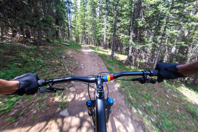 Lost Lake Trail #91