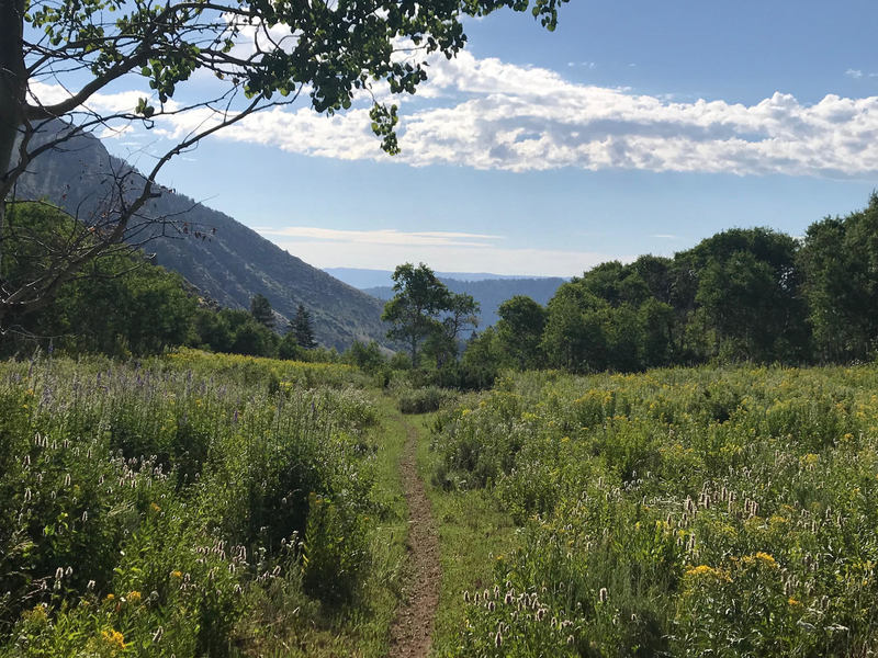 View from the top of Leatham's Hollow Trail