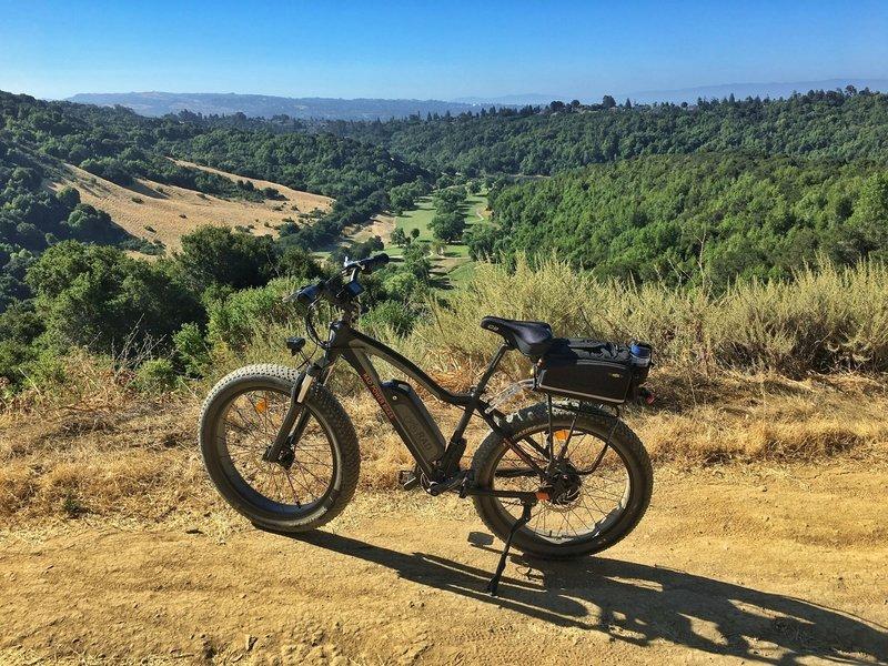 Overlooking Redwood Canyon
