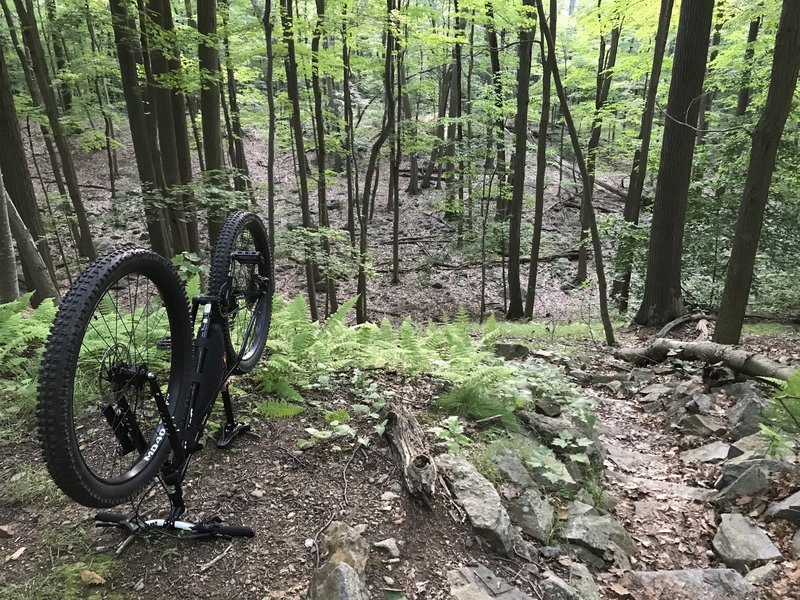 Anthony Wayne Horn Hill Loop Mountain Bike Trail