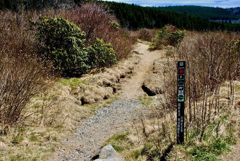 Trailhead - Downhill from here