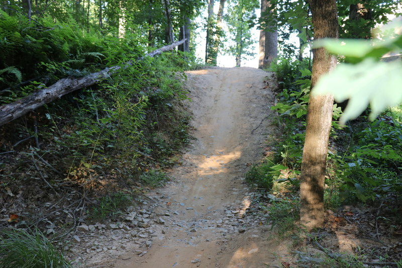 G-out to a small step up on South Side Trail.