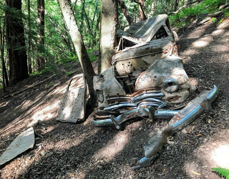 Old car wreck visible from one of the trails.