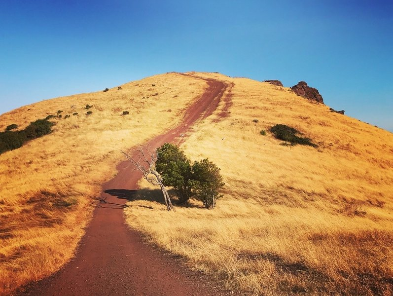 Red Hill trail.