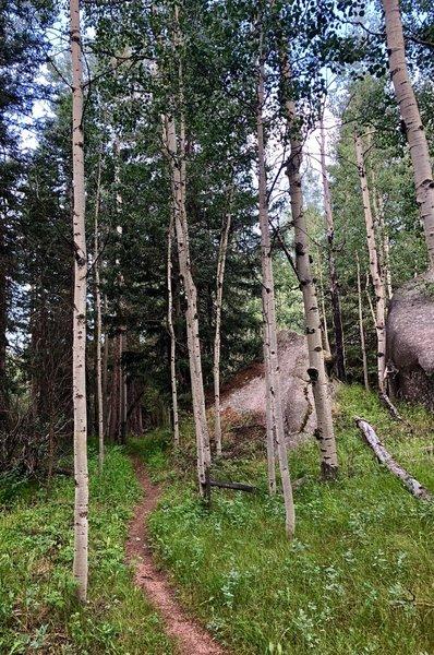 Lovell Gulch Trail.