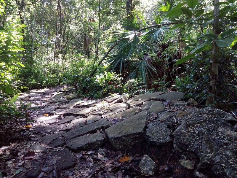 Orlando Mountain Bike Park's Rock Garden.