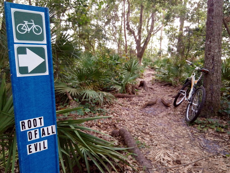 "Orlando Mountain Bike Park's ""Root of All Evil"" option."