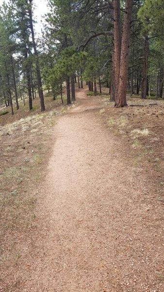 Lower Ridge Trail.