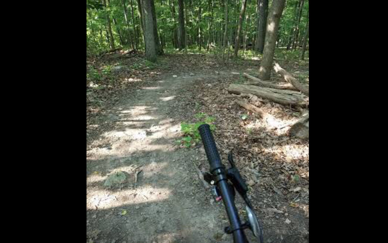 Upper/Northern most part of Kidney Bean trail, right before some fun banked turns and a jump.